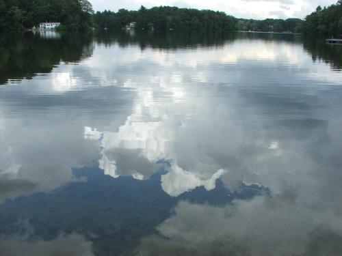 The Pond, 8 August 2008 (c) Katrien Vander Straeten