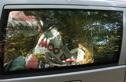 Car with Moo Doo (c) Katrien Vander Straeten