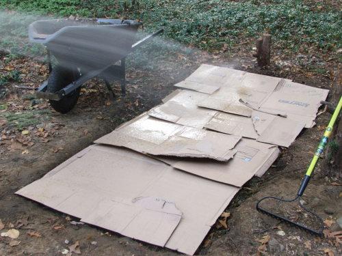 Bomb Proof mulching stage 4 (c) Katrien Vander Straeten