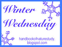 winterwednesday
