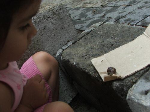 Amie and snail, June 2008 (c) Katrien Vander Straeten