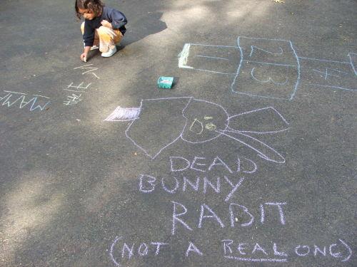 Amie's dead bunny rabbit, august 08 (c) Katrien Vander Straeten