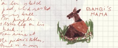 Bambi at Drumlin, October 2008 (c) Katrien Vander Straeten